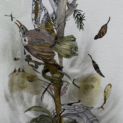 <a href='http://www.pamrogersart.com/'>Pam Rogers</a>